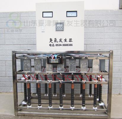 汇康中央空调内置式臭氧发生器
